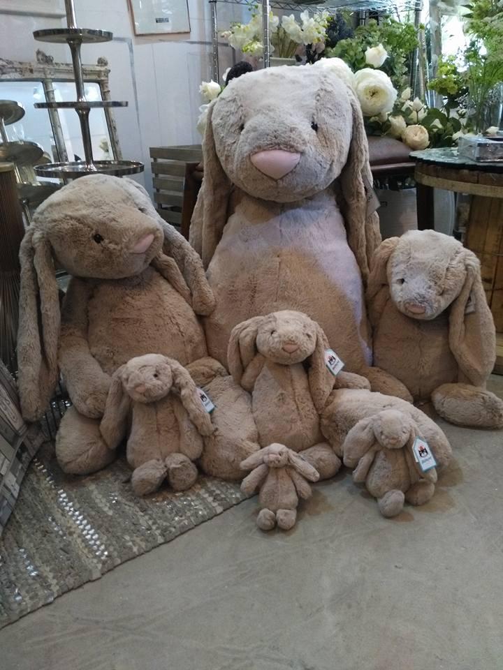 jellycat bashful bunny sizes 2