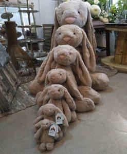 Bashful Bunnies