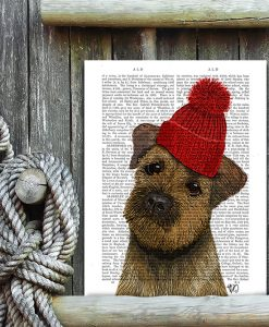 Fab Funky Border Terrier with Red Bobble Hat Genuine Original Antique Book Print