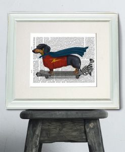 Fab Funky Dachshund On Skateboard Book Print - Original Book Page