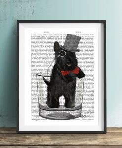 Fab Funky Scottish Terrier in Whisky Tumbler Genuine Original Antique Book Print