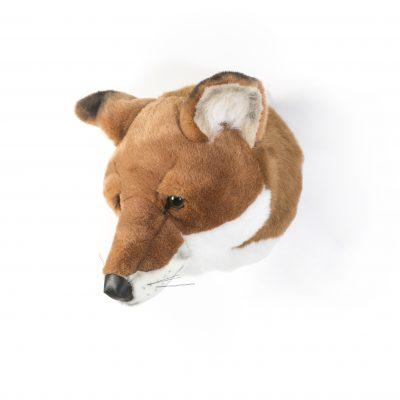 Wild & Soft Fox Head Louis 1