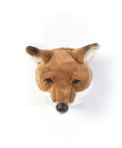 Wild & Soft Fox Head Louis