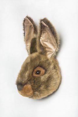 Wild & Soft Hare Head Lewis WS0053 R