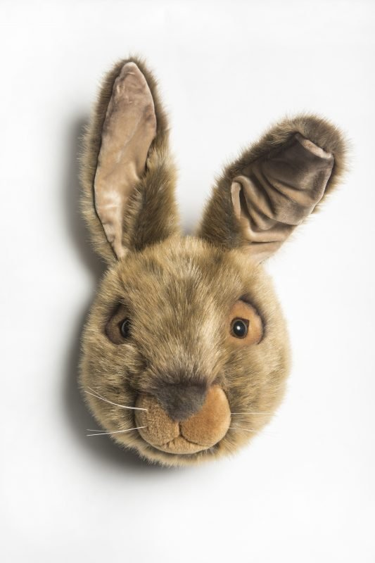 Wild & Soft Hare Head Lewis WS0053 front