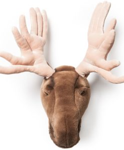 Wild & Soft Moose Head Alfred main