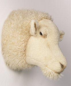 Wild & Soft Sheep Head Harry