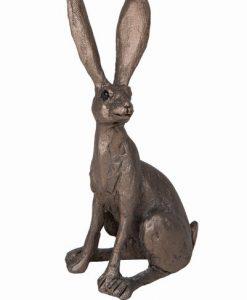 Frith Jaz Hare Sitting TMM001